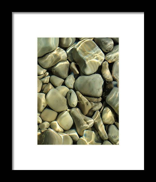 Still Life Framed Print featuring the photograph Tide Pool by Chuck Kugler