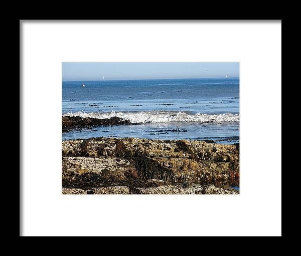 Beach Framed Print featuring the photograph Tide Pools by Siobhan Yost