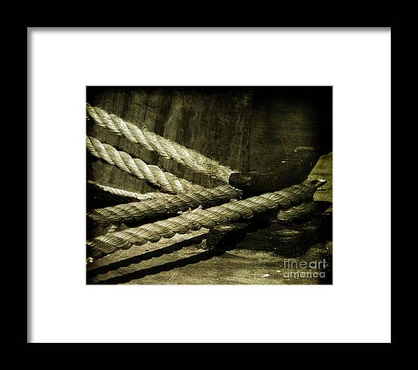 Strength Framed Print featuring the photograph Tied Down For Good by Susanne Van Hulst