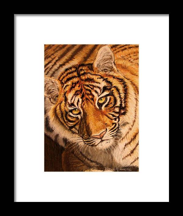 Tiger Framed Print featuring the drawing Tiger by Karen Ilari