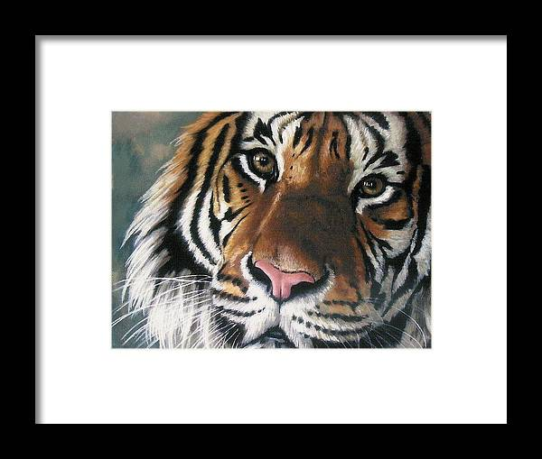 Tiger Framed Print featuring the pastel Tigger by Barbara Keith