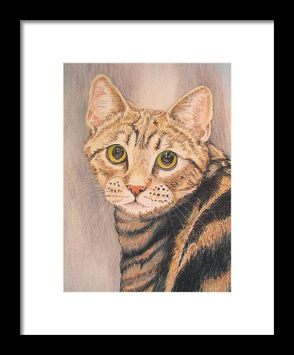 Portrait Framed Print featuring the drawing Tigger by Linda Williams