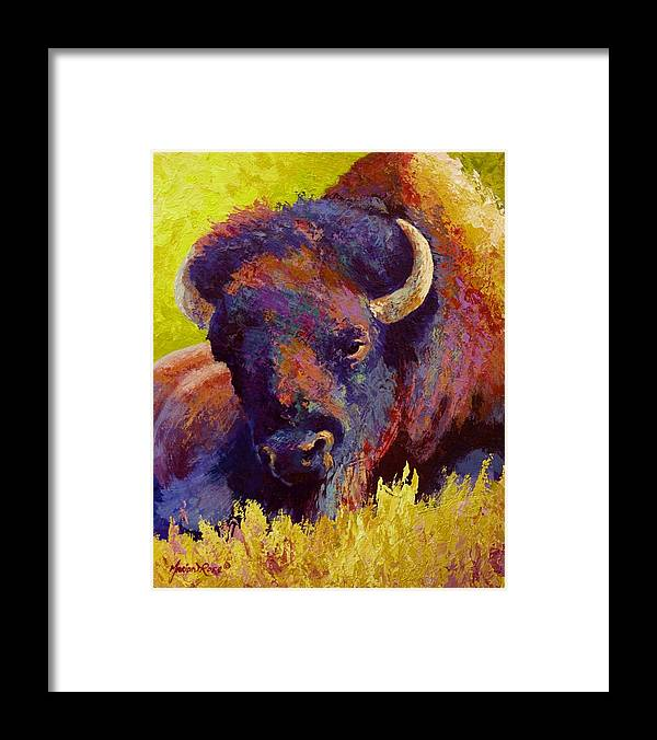 Bison Framed Print featuring the painting Timeless Spirit by Marion Rose