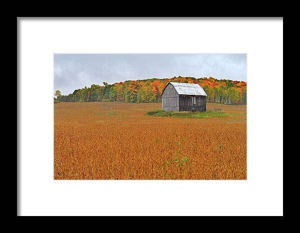 Gatineau Framed Print featuring the photograph Tipping Point by Tony Beck