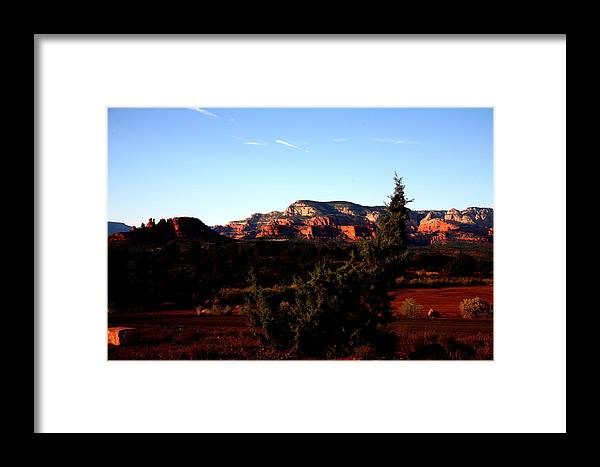 Landscape Framed Print featuring the photograph Tired Tree by Jennilyn Benedicto