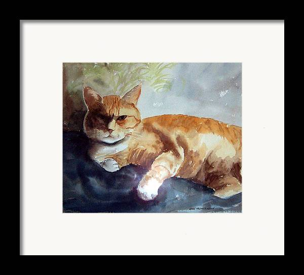 Cat Framed Print featuring the print Toby The Best Cat Ever by Anne Trotter Hodge