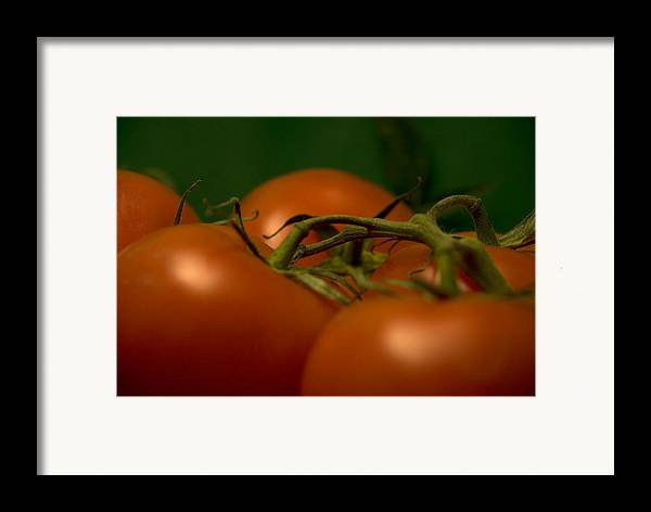 Tomatoes Framed Print featuring the photograph Tomatoes by Jessica Wakefield