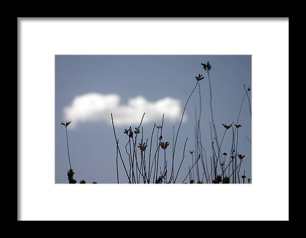 Photographer Framed Print featuring the photograph Too Late She Said by Jez C Self