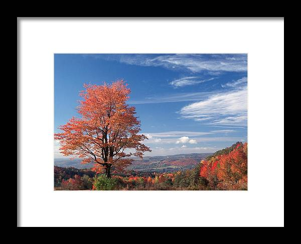 Fall Framed Print featuring the photograph Top Of The World by Raju Alagawadi