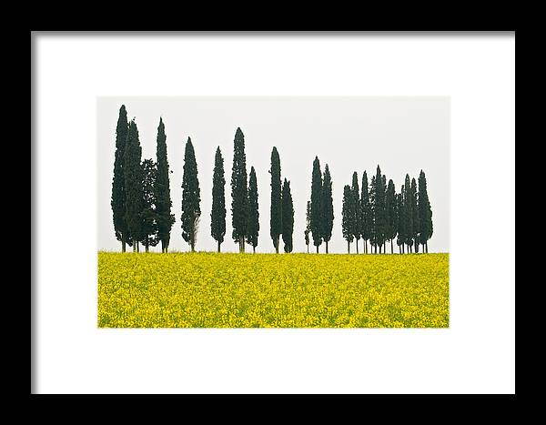 Landscape Framed Print featuring the photograph Toscana Cypresses by Igor Voljch