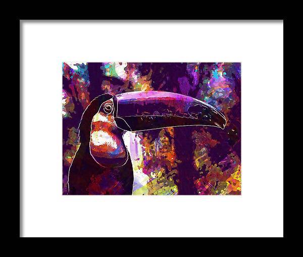 Toucan Framed Print featuring the digital art Toucan Bird Nature Zoo Beak by PixBreak Art
