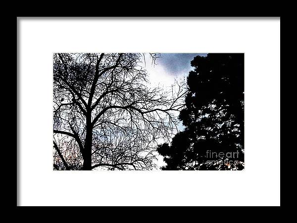 Nature Framed Print featuring the photograph Touch Of Surmise by Percival Vince