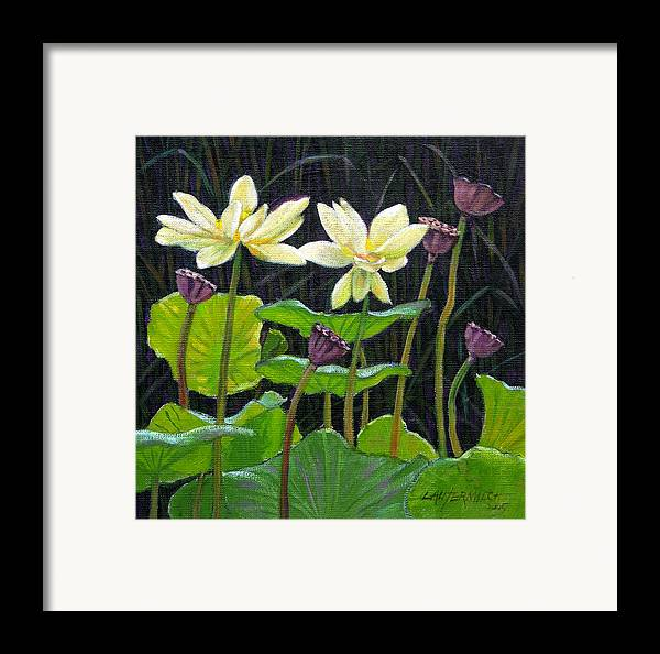 Lotus Framed Print featuring the painting Touching Lotus Blooms by John Lautermilch