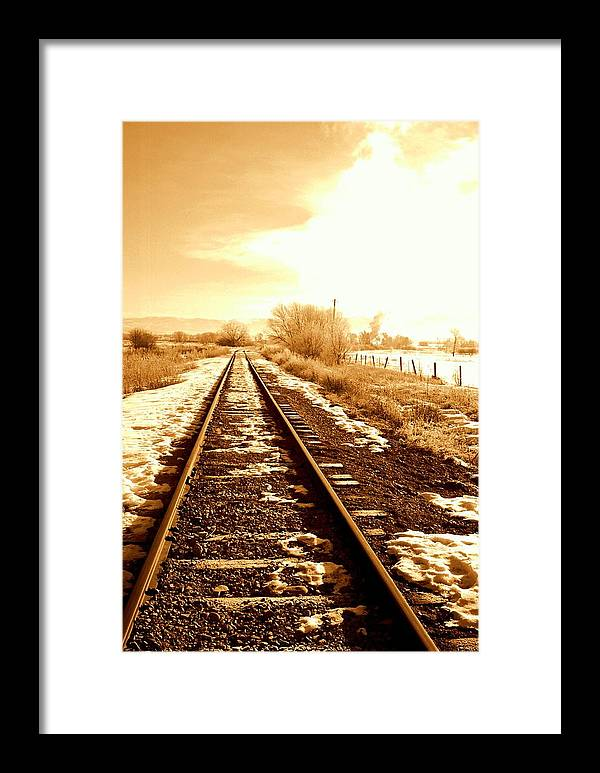 Railroad Framed Print featuring the photograph Tracks by Caroline Clark