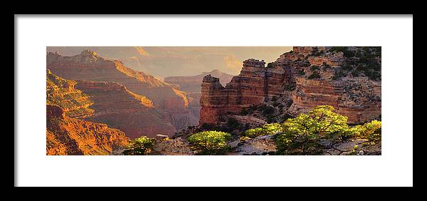 Grand Canyon National Park Framed Print featuring the photograph Trailside by Mikes Nature