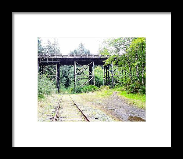 Bridge Framed Print featuring the photograph Trains Over And Under by Kathleen Voort