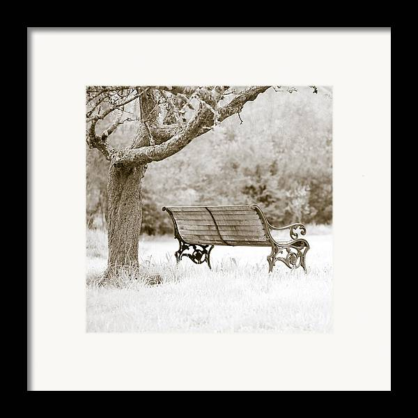 Frank Tschakert Framed Print featuring the photograph Tranquility by Frank Tschakert