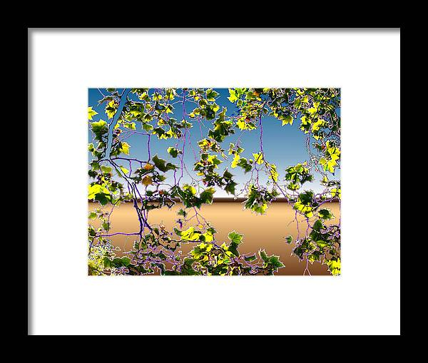 Tree Framed Print featuring the photograph Tree Leaves by Tim Allen