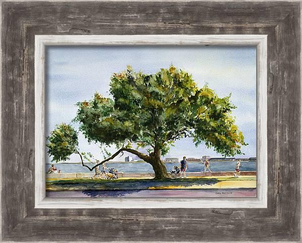 Tree of G by Dan McCole