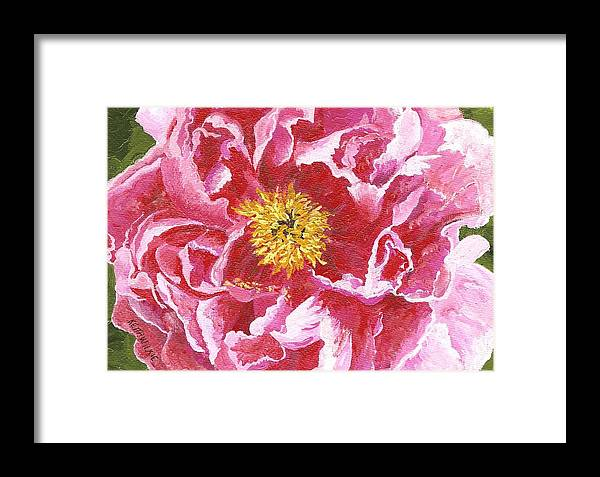 Peony Framed Print featuring the painting Tree Peony by Keith Wilkie