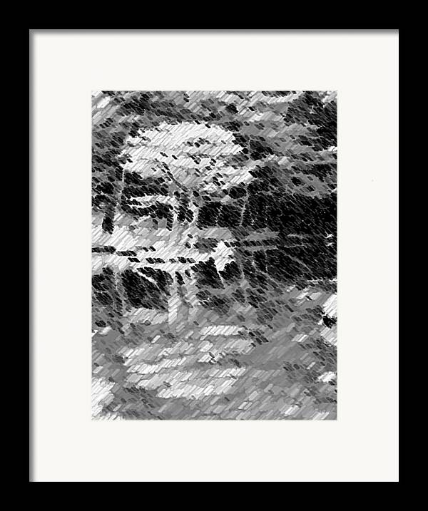 Abstract Framed Print featuring the photograph Tree Reflecting In Pond by Curtis Schauer