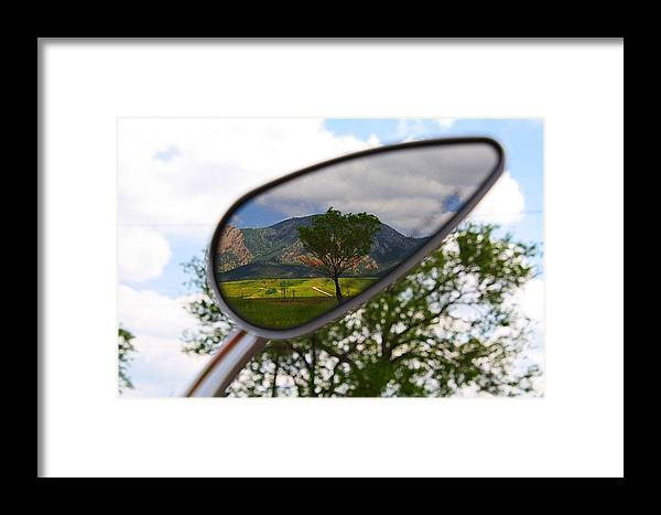 Mirrored Framed Print featuring the photograph Tree Reflections by KatagramStudios Photography