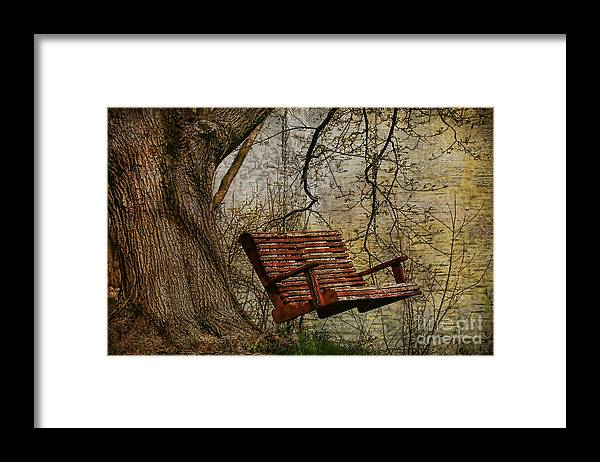 Tree Framed Print featuring the photograph Tree Swing By The Lake by Deborah Benoit