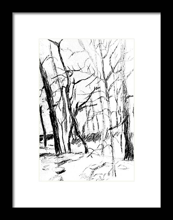 Trees Framed Print featuring the drawing Trees At My House by Hae Kim