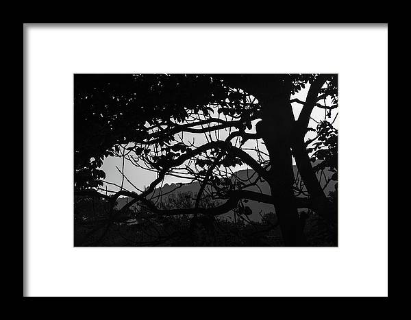 Sunset Framed Print featuring the photograph Trees Black And White - San Salvador by Totto Ponce