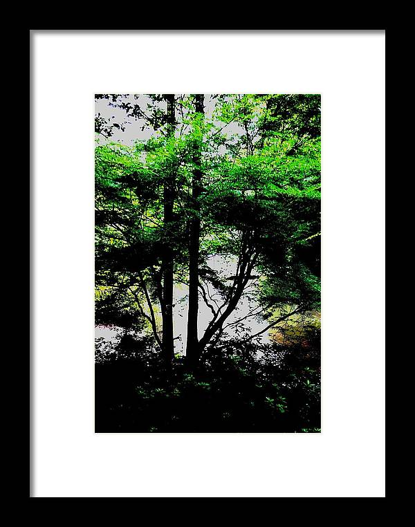 Landscape Trees Greenery Framed Print featuring the photograph Trees Of Spring by Deb Schneider