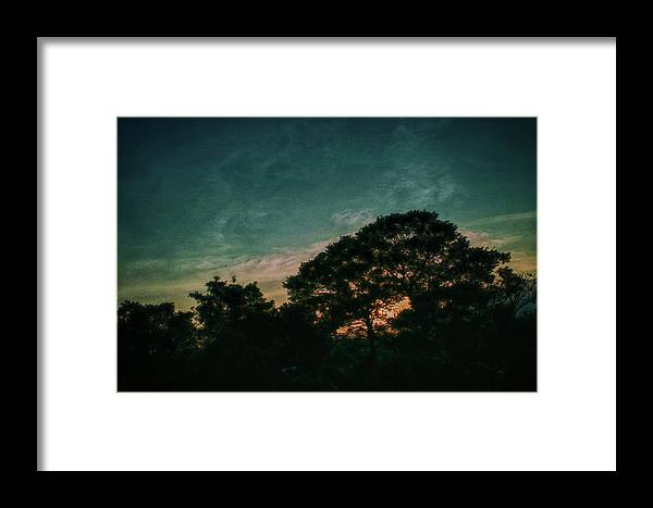 Sunset Framed Print featuring the photograph Trees - San Salvador Iv by Totto Ponce