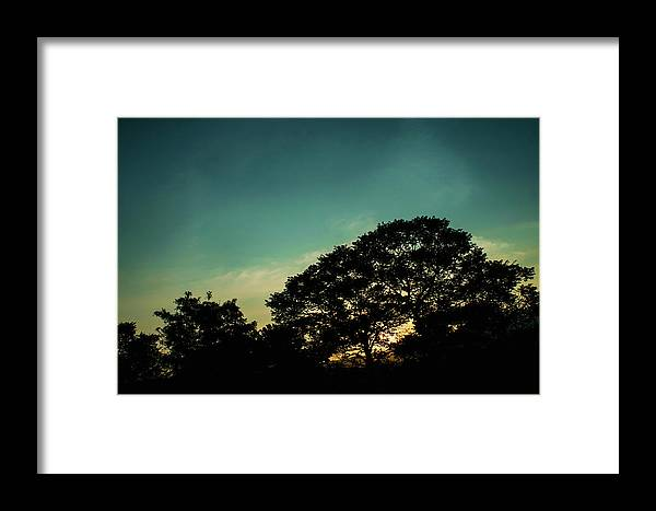 Sunset Framed Print featuring the photograph Trees - San Salvador V by Totto Ponce