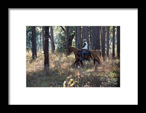 Framed Print featuring the photograph Trey10 by Chip Laughton