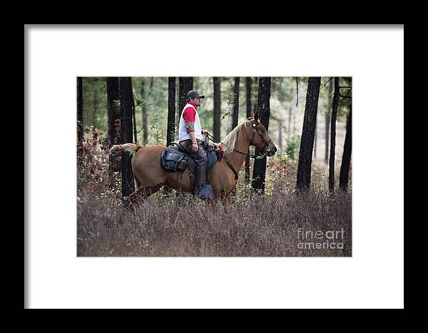 Framed Print featuring the photograph Trey3 by Chip Laughton