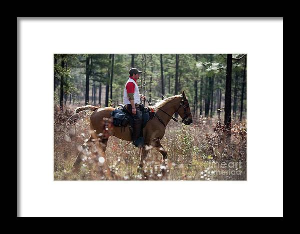 Framed Print featuring the photograph Trey4 by Chip Laughton
