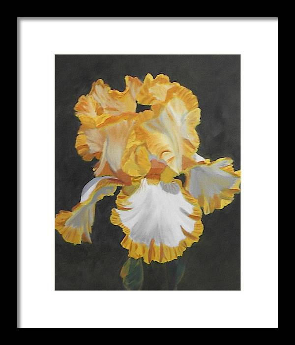 Floral Framed Print featuring the painting Trimmed In Yellow 2 by Robert Tower