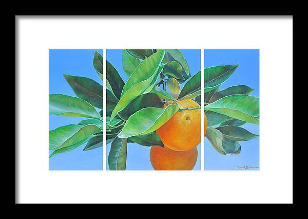 Acrylic Painting Framed Print featuring the painting Triptyque Orange by Muriel Dolemieux