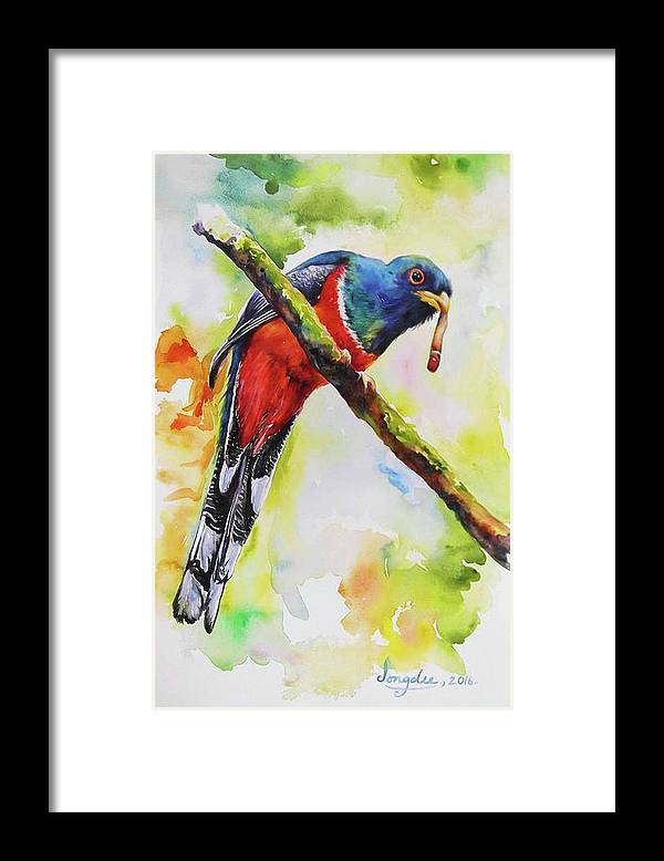 Trogon Framed Print featuring the painting Trogon Feeding by Jongdee Thongkam