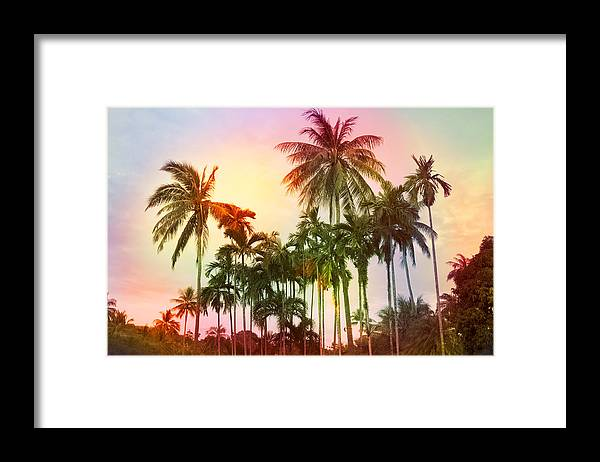 Tropical Framed Print featuring the photograph Tropical 11 by Mark Ashkenazi
