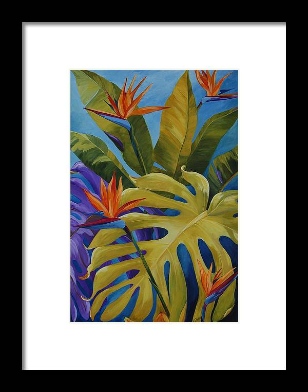Bird Of Paradise Framed Print featuring the painting Tropical Birds by Karen Dukes