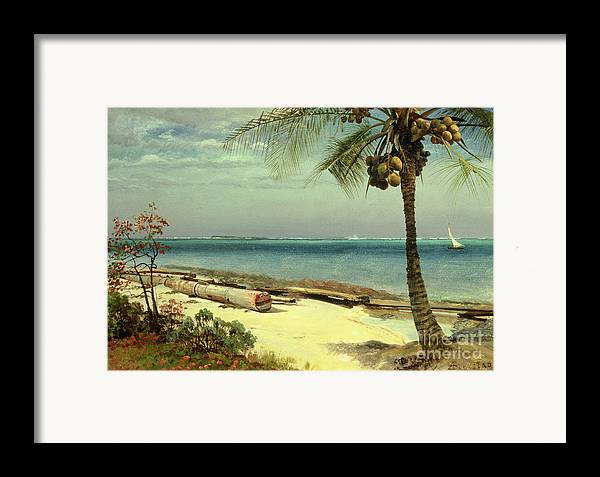 Shore; Exotic; Palm Tree; Coconut; Sand; Beach; Sailing Framed Print featuring the painting Tropical Coast by Albert Bierstadt
