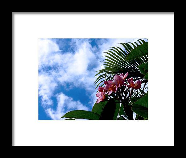 Flower Framed Print featuring the photograph Tropical Days by Edan Chapman