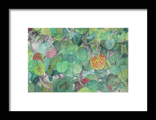 Plants Framed Print featuring the painting Tropical Leaves by Judy Riggenbach