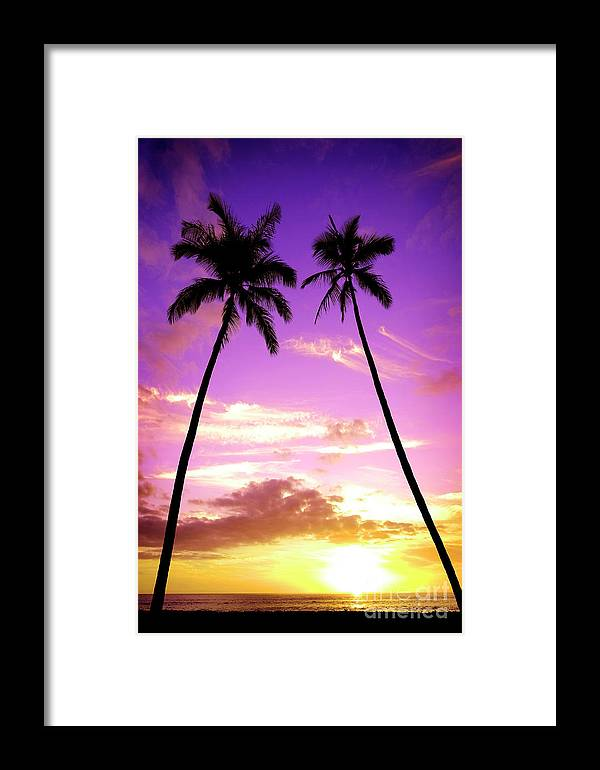 Afterglow Framed Print featuring the photograph Tropical Palm Trees Silhouette Sunset Or Sunrise by Lane Erickson