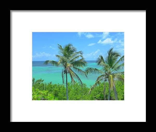 Landscape Framed Print featuring the photograph Tropical Splendor by Florene Welebny