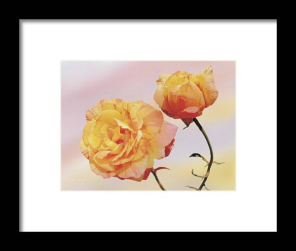 Roses Framed Print featuring the painting Tropicana Roses by Jan Baughman