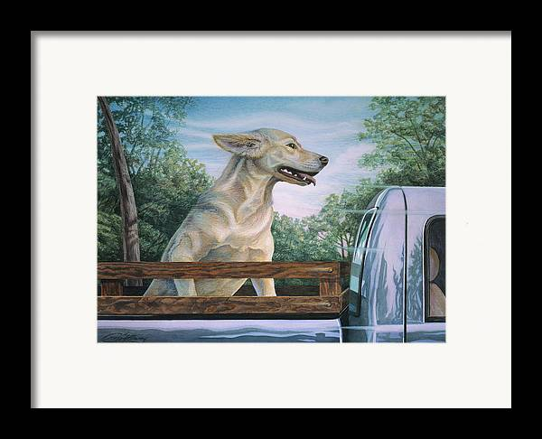 Dog In Truck Framed Print featuring the painting Truck Queen by Craig Gallaway