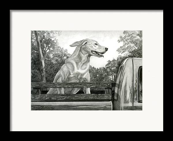 Dog Framed Print featuring the painting Truck Queen Study by Craig Gallaway