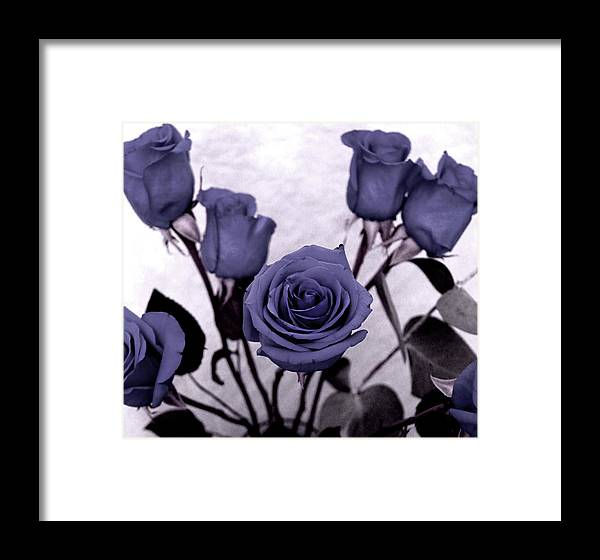 Rose Framed Print featuring the photograph Trunk Roses by Candice Wright