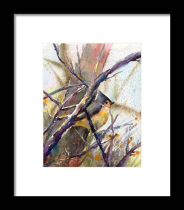 Birds Framed Print featuring the painting Tuffed Titmouse 2 by Elizabeth Evans